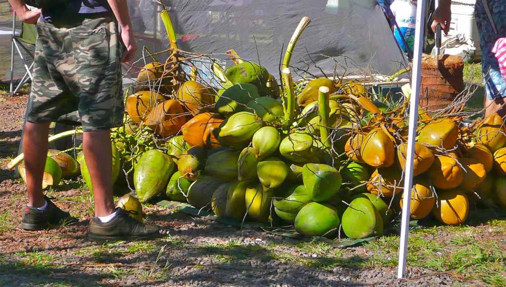 Coconut stall - Maui - Hawaii
