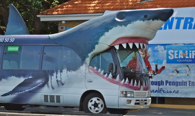 The Kelly Taltons Shark bus - Auckland